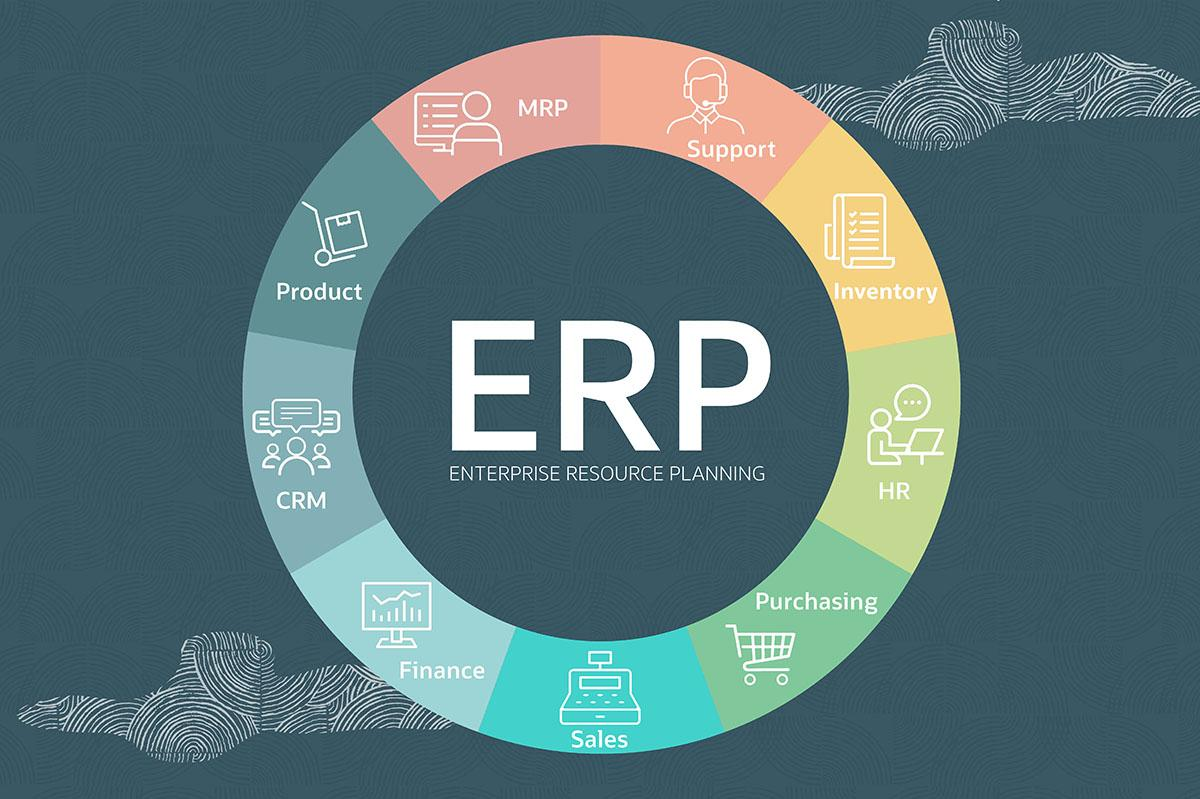 Guide To Assess the Need for ERP Software